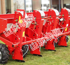 Potato Planter Root Seed Sowing Machine