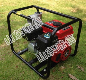 3 Inch Agricultural Irrigation Gasoline Water Pump