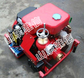 Easy Move Diesel Engine Fire Fighting Pump