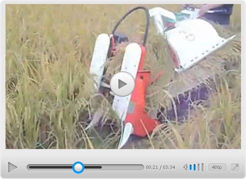 Half-feed Rice Harvester