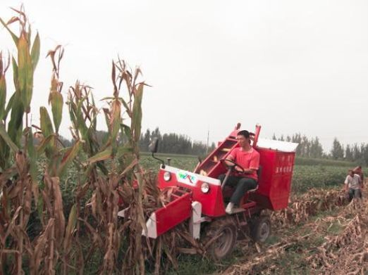 How To Use Agricultural Farm Corn Combine Harvester